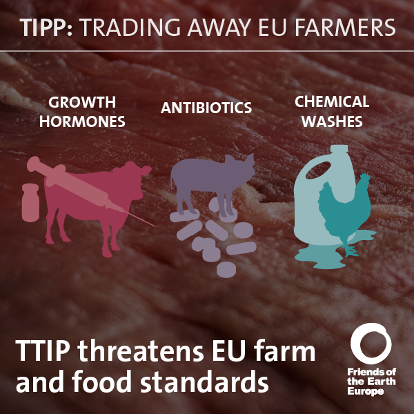 Foee Farming Infographics3