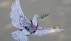 Colomba Per La Pace